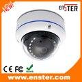 Vandalproof Metal Dome H.264 2 Megapixel Outdoor Ip Camera With Board Lens 3.6MM