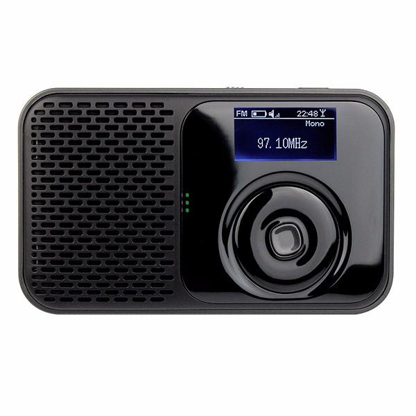 Hot Personal Handheld DAB DAB+ Radio FM Stereo (4)