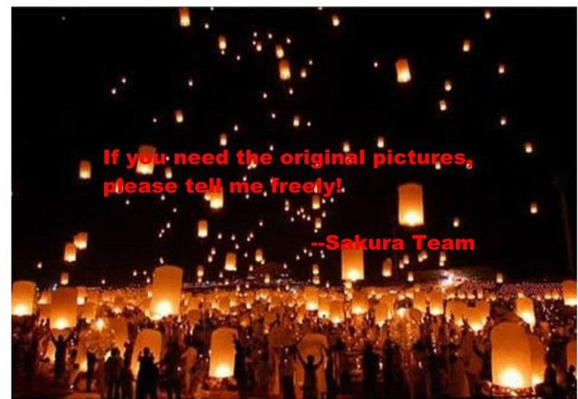 DHL Free+500pcs/lot High Quality Fireproof Paper sky lanterns/wishing lanterns Oval & Heart shape flammea sky lantern