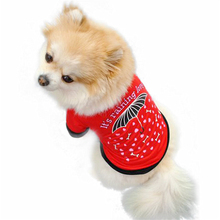 Summer Puppy Red T-shirt
