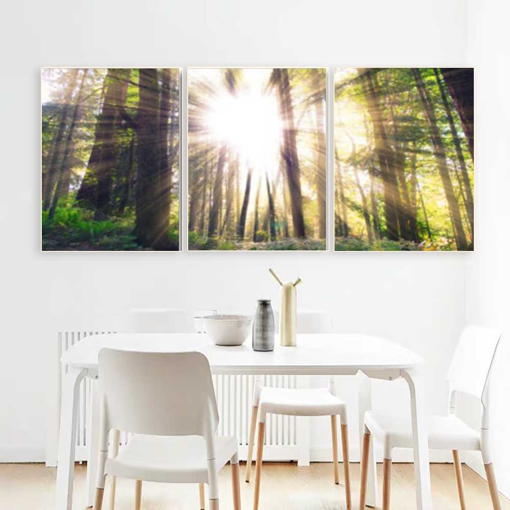 Laeacco 3 Panel Forest Sunshine Wall Artwork Outside Posters and Prints Home Living Room Decor Paintings Calligraphy Pictures