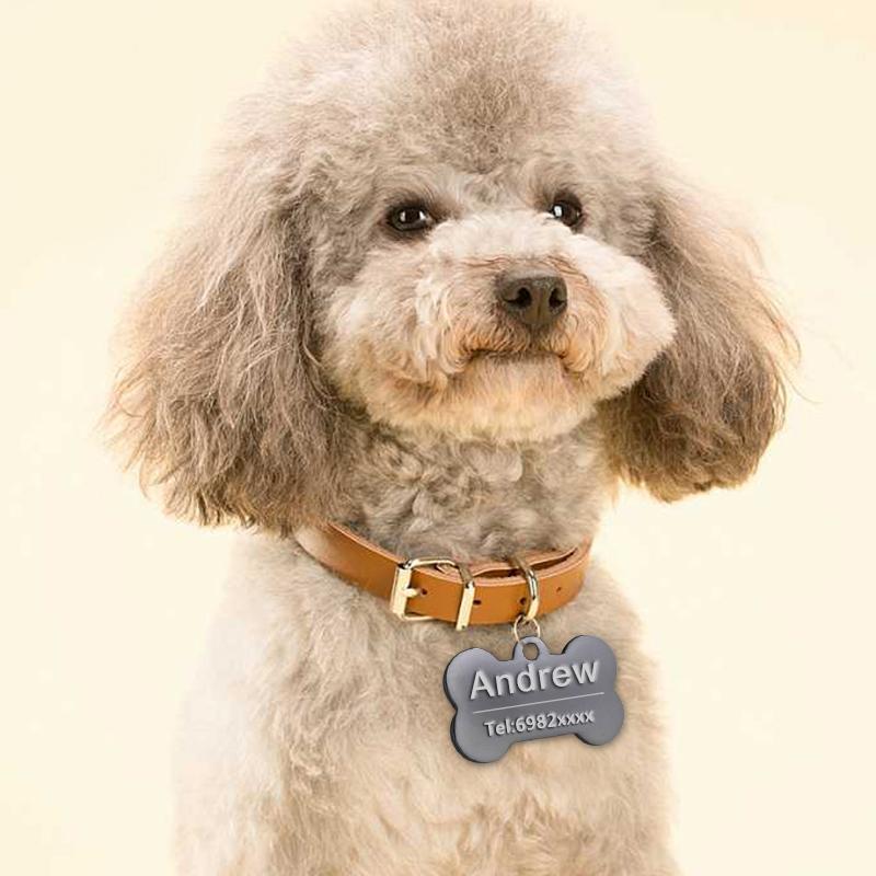 Etiqueta de identificación personalizada para collares de perro 2