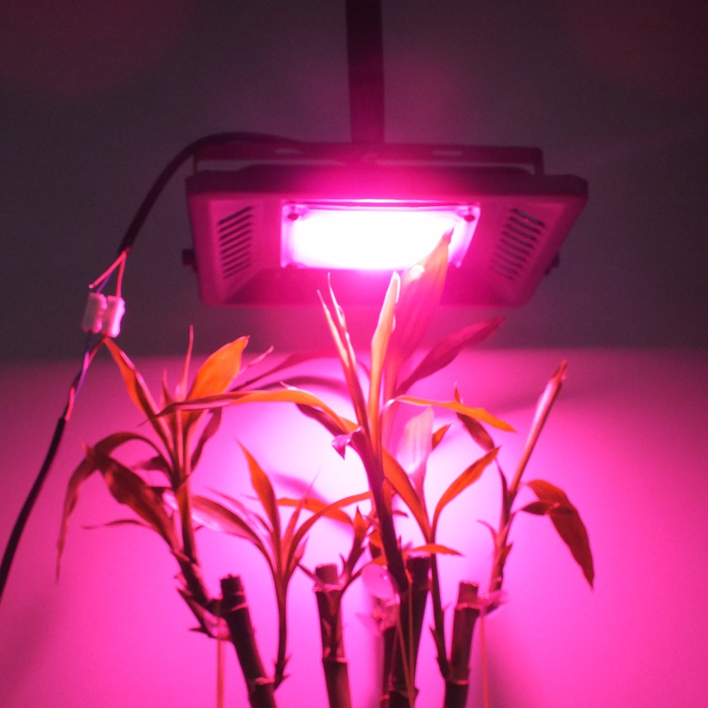 50W LED Plant Light Full Spectrum Grow Chip Broad 380-840nm Engine Input Integrated Smart IC Driver For DIY Hydroponic Flowers стоимость