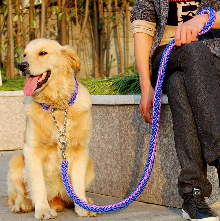 Double-Strand-Rope-Large-Dog-Leashes-Metal-P-Chain-Buckle-National-Color-Pet-Traction-Rope-Collar