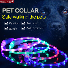 Dog Collar USB LED Rechargeable Pet Luminous Perro Light Night Safety