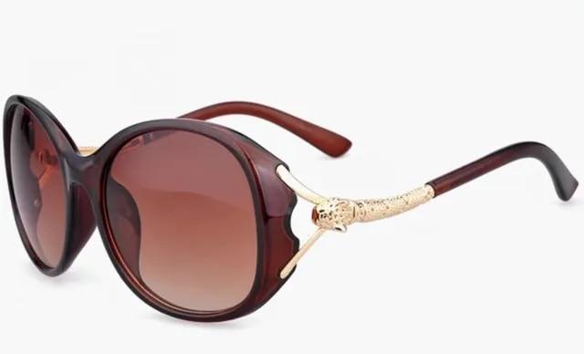 Fashion Women Sunglasses 2019 Hot Sale Acetate Oversized Sun Glasses Party Eyewear Shopping Sun Glass Magazine Catwalk Sunglass