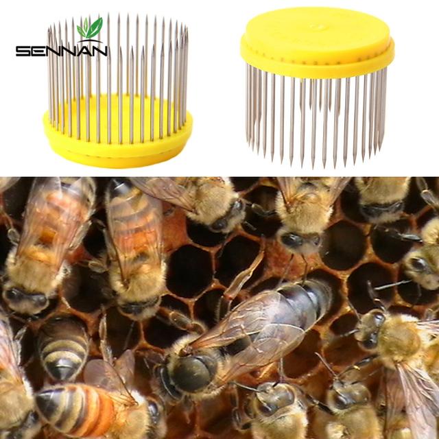 Sennan Beekeeping Queen Needle Type Bee Cage Steel Catching Catcher Equipment Tools New