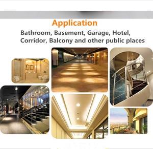 Image 5 - 3W/5W/7W LED Ceiling Lamp Downlights For Bathroom Stairs Balcony AC220V With Intelligent Radar Sensor Lighting
