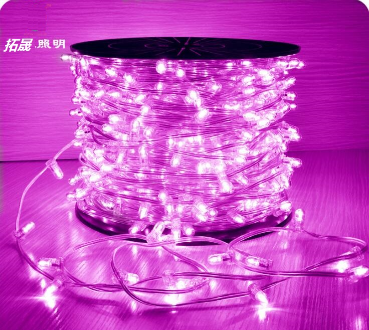 Can You Cut Outdoor String Lights: 100m Spool Led Clip Light String 12v Fairy Lights