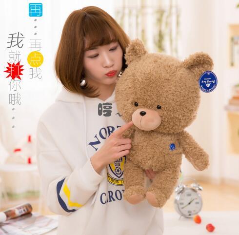 WYZHY nouvel ours en peluche peluche câlin ours poupée canapé chambre décoration envoyer des amis enfants cadeaux 60 CM