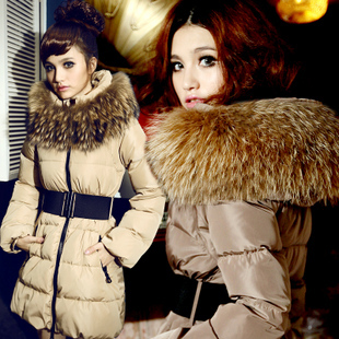 2013 Autumn And Winter Luxury Faux Fur Collar And Long Slim Female Thick Warm Down Jacket Women New Fashion Down Coat Snow H1068