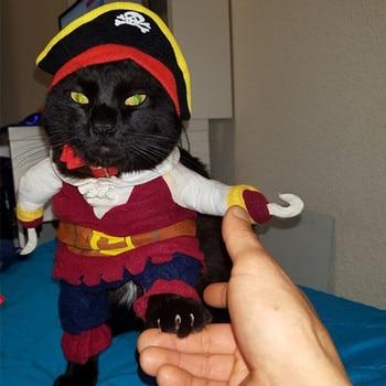 Grappige katten piraten kostuum 1
