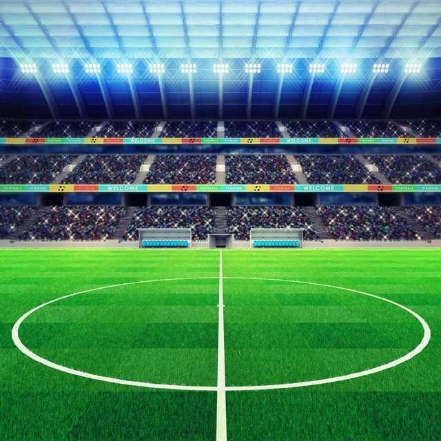 10x10ft Stadium Aunce Platform Green Soccer Field Football Court Custom Photo Backgrounds Studio Backdrop Vinyl 300cm