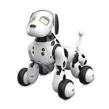 DIMEI 9007A 2.4g беспроводной пульт дистанционного управления контроль умный робот собака Детская игрушка умный говорящий робот собака игрушка электронный питомец подарок на день рождения