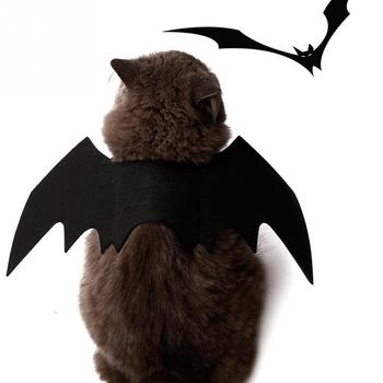 Cat Bat Wings Costume  4