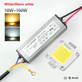 10W 20W 30W 50W 100W LED Chips High Power COB LED lamp Chips Bulb with LED Driver For DIY Floodlight Spot light Lawn