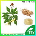 Top Quality for 10 Years Experience Manufacture Ginseng Extract Concentrate 600g/lot