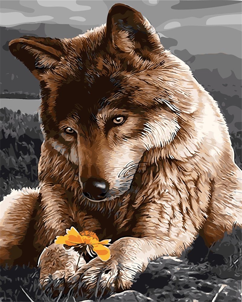 ᗜ LjഃNo frame wolf DIY animal Painting By Numbers Canvas ...