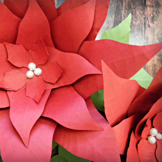 Online shop 3pcs 30cm paper poinsettia flowers giant paper flowers 3pcs 30cm paper poinsettia flowers giant paper flowers for christmas photo backdrop christmas decor mightylinksfo
