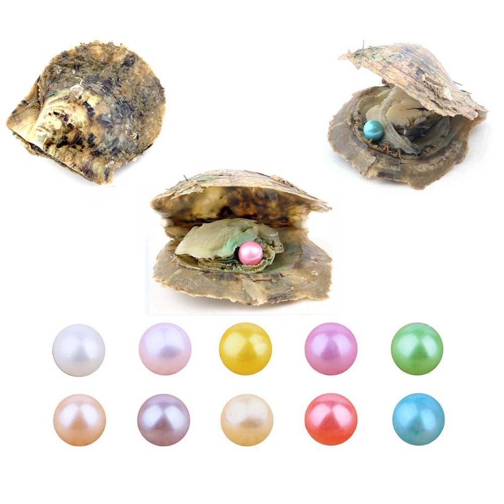 все цены на 10 PCS Akoya Pearl Oyster Cultured Summer Color Love Wish Pearl Oysters with 7-8 mm Round Pearls Inside Birthday Gifts онлайн