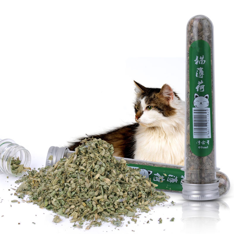 1 bottle 45ml Natural Pet Kitten Cat Mint make your cat to have a good mood pet cat supplies