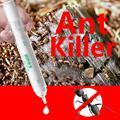 Matar de volta amarelo líquido formigas assassino medicina gel isca armadilha não-tóxico efeitos de veneno inseticida verde controle de pragas