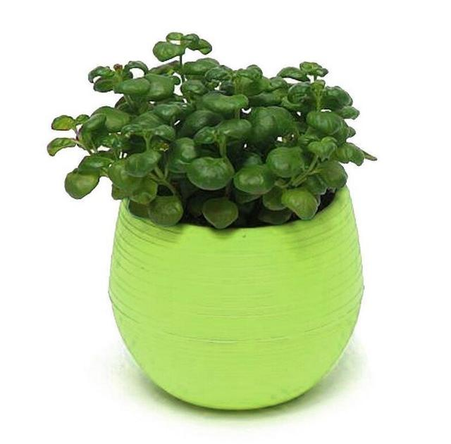New Plastic Flower Pot Succulent Plant Flowerpot For Home Office Decoration 5 Color Garden Flower Floral Pots  Supplies