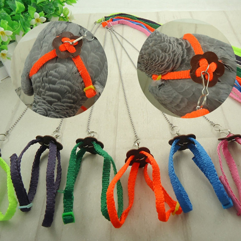 Parrot Bird Leash Outdoor Adjustable Harness Training Rope Anti Bite Flying Band Random Color
