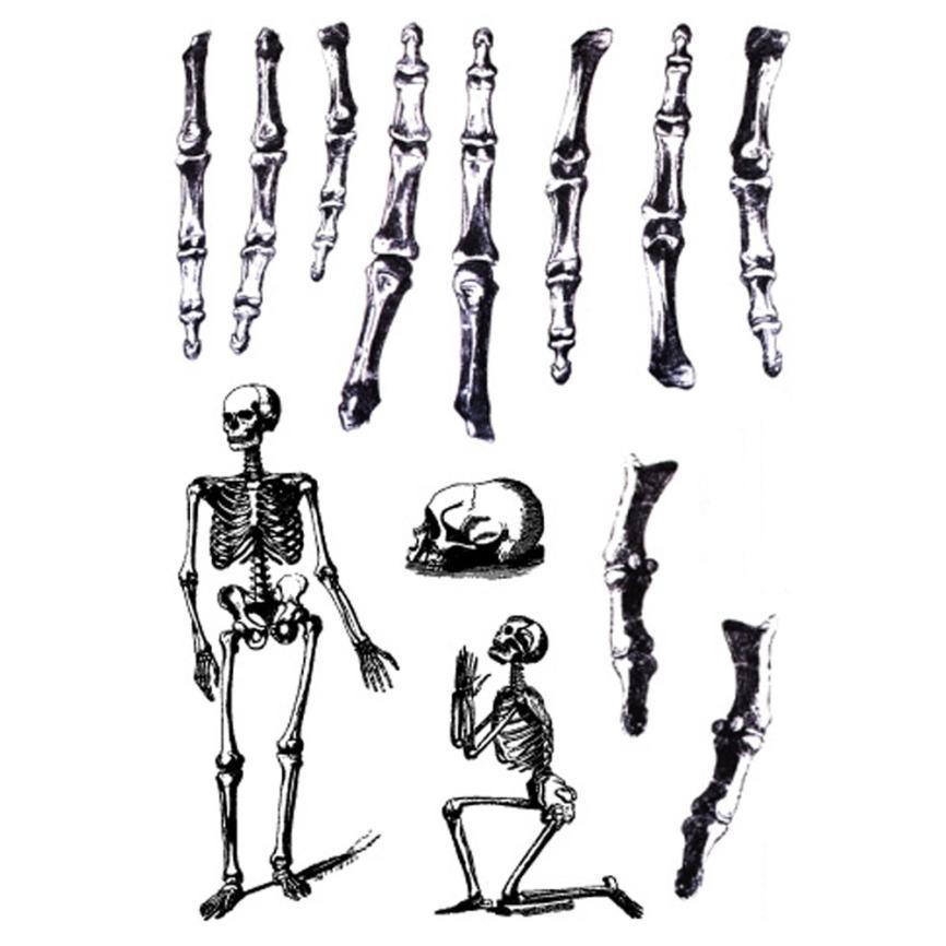 5PCS Halloween Wound Scab Blood Scar Tattoos Men And Women Body Art  Machinery Waterproof Temporary Tattoo Beauty Girl 2017-in Temporary Tattoos  from