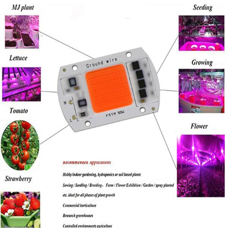 DIY DOB LED Grow Light Chip AC 220V 20W 30W 50W Full Spectrum Phyto Lamp For Indoor Garden Greenhouse Flowers Growth LED Beads