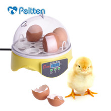 купить New Mini Brooder Egg Automatic Incubator Controller Poultry Hatchery Machine for Chicken Quail Birds Advance Hatching Incubator