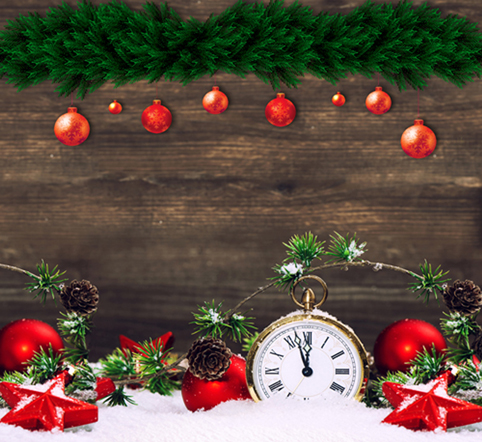10X10ft thin vinyl photography Christmas backgrounds Computer Printed children Photography backdrops for Photo studio CM-6446