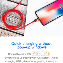 Baseus Yiven Series TYPE-C to Apple Cable for iPhone X 8 7 6 5