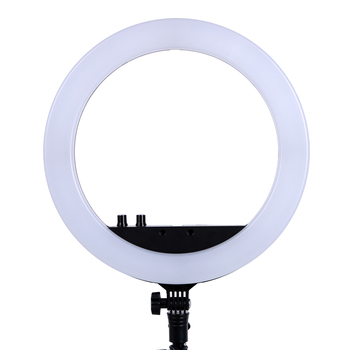 13 Inch Photo Studio lighting LED Ring Light 336PCS LED Bulbs 3200-5600k Photography Dimmable Ring Lamp  for Video,Makeup Photographic Lighting