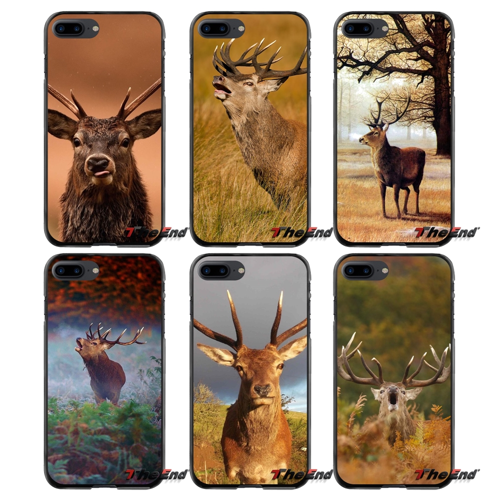 For Apple iPhone 4 4S 5 5S 5C SE 6 6S 7 8 Plus X iPod Touch 4 5 6 Accessories Phone Shell Covers Deer Animal