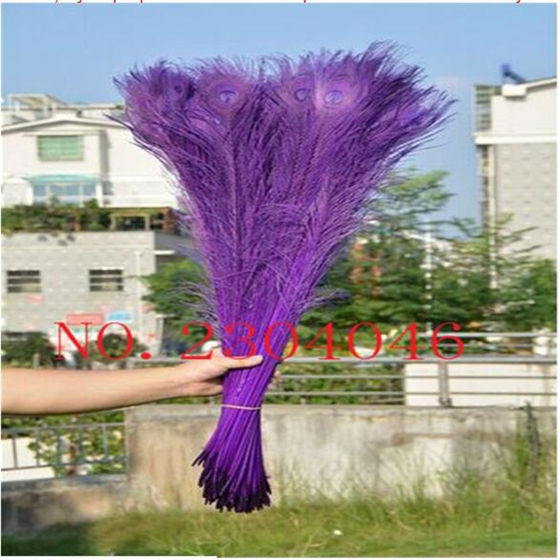 Z & Q & Y Natural 100 root 80 90CM (32 36 inches) Peacock feather stained purple DIY make up Madonna costume decoration