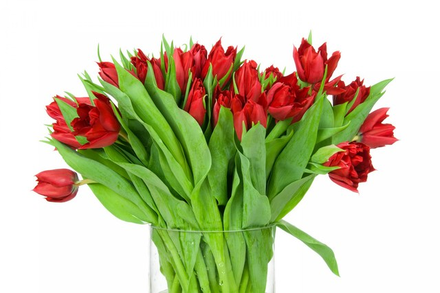 Фото букетов тюльпанов дома букеты волгодонске