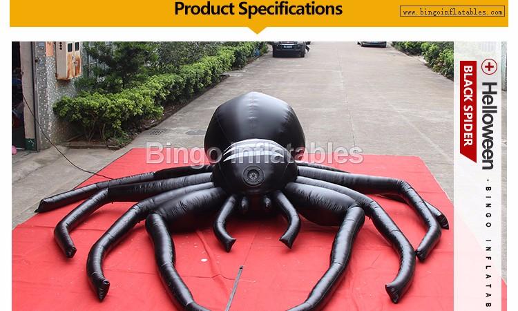 5M-black-spider--BG-A0803-2-2016_02