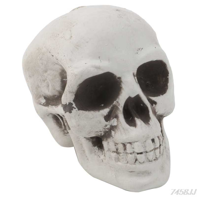 Skull Decor Prop Skeleton Head Plastic Halloween Day Coffee Bars Ornament G22 Drop ship