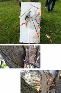 Image 2 - 31 pollici 7mm freccia in fibra di vetro spina dorsale 700 diametro per arco ricurvo arco lungo pratica tiro con larco caccia tiro