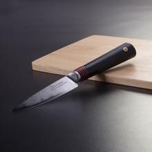 TUOBITUO 3,5 4-zoll-gemüsemesser VG10 Japanischen Damaskus Stahl Flawless Schleifen Rasiermesser Obstschäler Schneidwerkzeug Geschenk Verpackung
