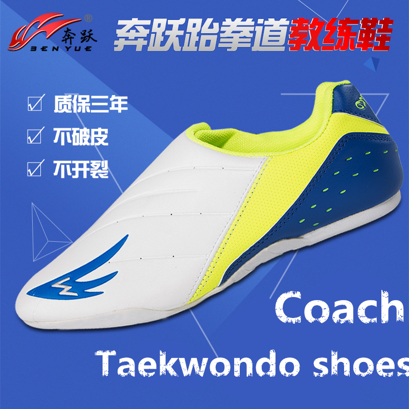 PU Leather White Green Tae Kwon Do Aikido Martial arts Shoes Umpire Coach Professional leaders Sports