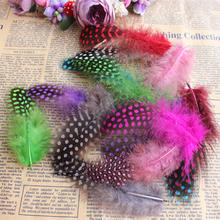 25pcs Guinea Fowl Spotted Feather Craft Chicken Feather Beautiful Gull Hair Extension Feathers for Home Decor Length 5-10cm(China)