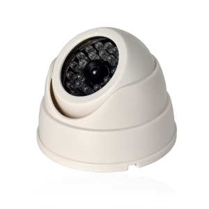 Fake video surveillance Camera