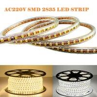 BSOD AC 220V SMD 2835 LED Strip 120leds/m Waterproof IP67 Flexible More Brightness Free DHL