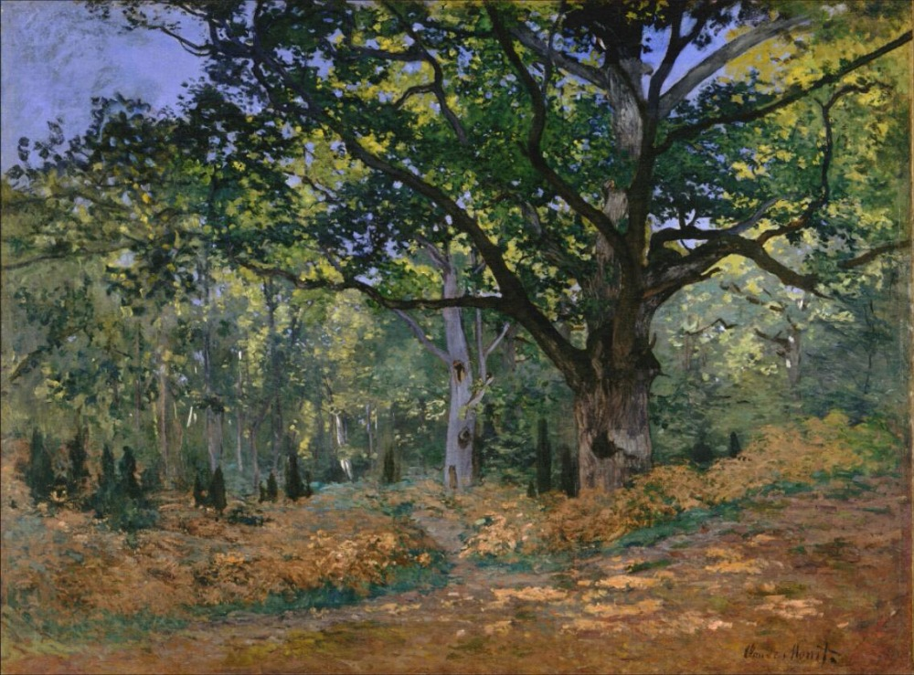 High quality Oil painting Canvas Reproductions The Bodmer Oak, Fontainebleau (1865) By C ...