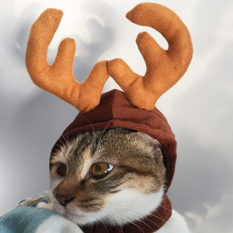 Christmas Dog Costumes.Us 3 8 38 Off Christmas Dog Hats For Pets Cat Animal Hats Funny Pet Dog Costumes For Small Dogs Winter Cats Hat Pet Grooming 38 In Dog Accessories