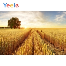 Yeele Harvest Golden Wheat Field Farm View Portrait Backgrounds Wall Photography Seamless Photographic Backdrop For Photo Studio