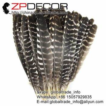 ZPDECOR 25-30cm(10-12inch) 100pieces/lot Wholesale Original Natural Beautiful Barred Turkey Feathers for Carnival Show