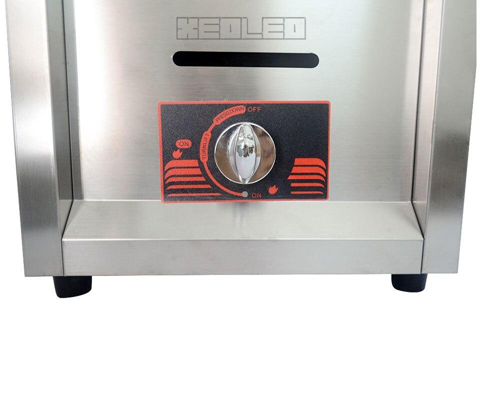 gas fryer (21)